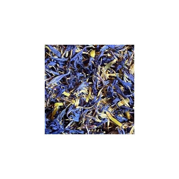 Fleurs de bleuet