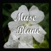 Musc Blanc
